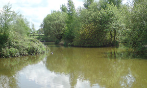 places to fish: Cheshire
