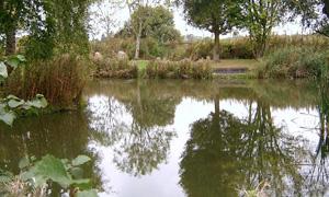 places to fish: Dorset
