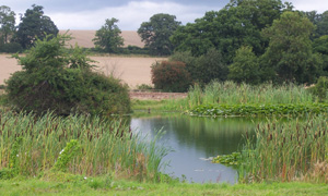 places to fish: Herefordshire