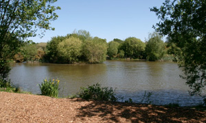 places to fish: Solihull