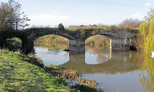 places to fish: South West