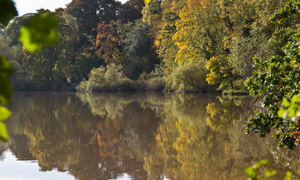 places to fish: Tyne and Wear