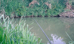 fishing in Warwickshire