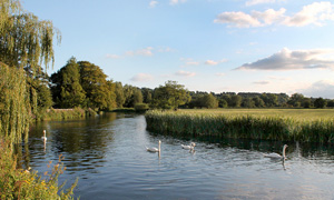 places to fish: Wiltshire