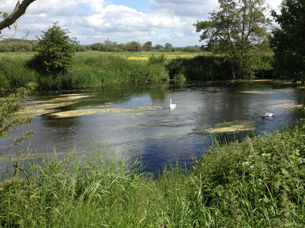 The River Derwent at Shardlow
