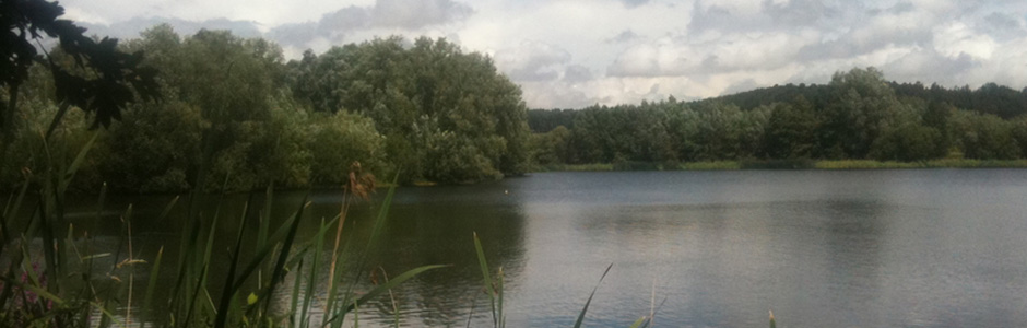 Manor Farm Fishery