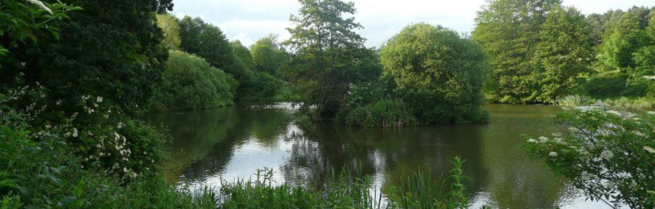 Alders Farm Fishery