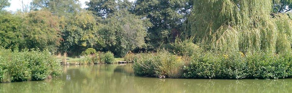Framfield Park Fishery