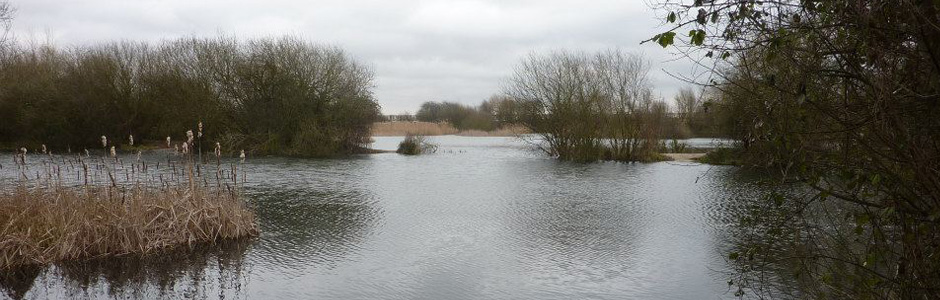 Doggetts Farm Fishery