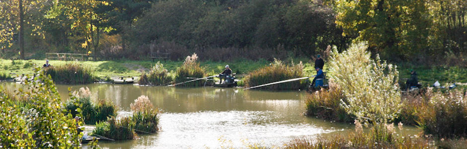 None Go Bye Farm Fishery