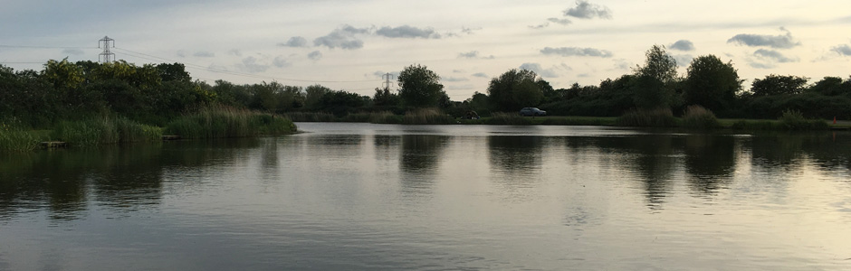 Rycroft Fisheries