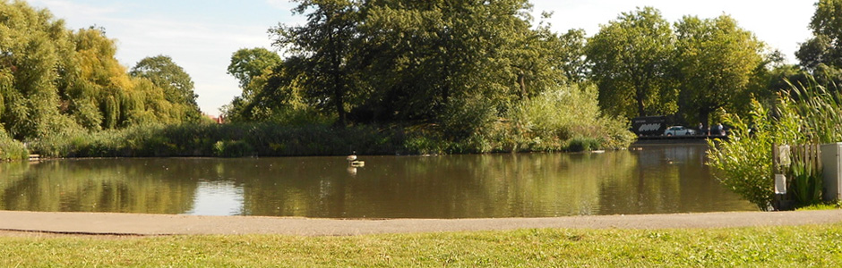 Clapham Common Ponds