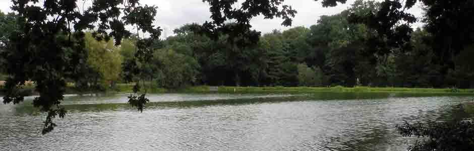 Perch Pond