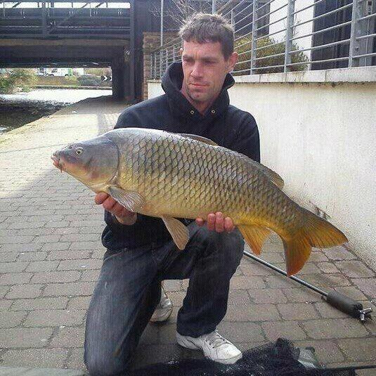 Nottingham canal carp