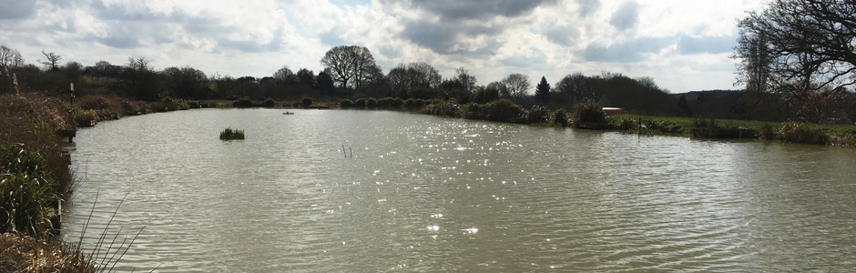 Oak Tree Lakes Fishery