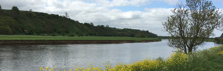 River Trent - Hoveringham