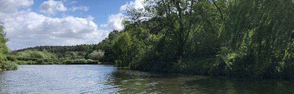 Sherwood Forest Fishery