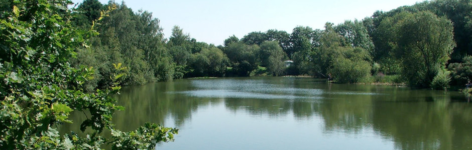 Lyneham Lake