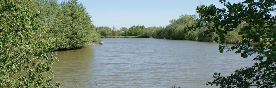 Barston Lakes