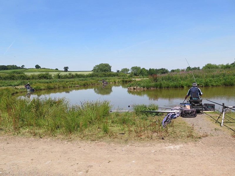 fishing at heronbrook