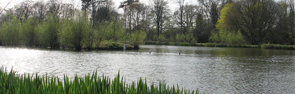 Marsh Farm Fishery