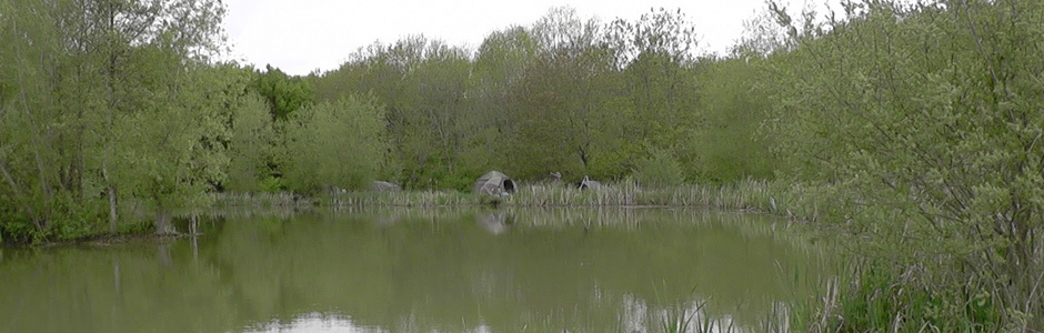 Furnace Lakes Fishery