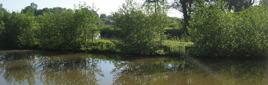 Moorlands Farm Fishery